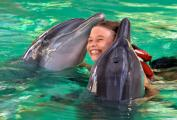 Bali, swimming with dolphins
