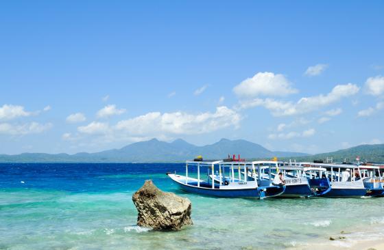 Bali, Menjangan Island